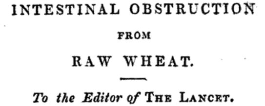 intestinal obstruction from raw wheat