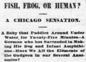 fish frog or human