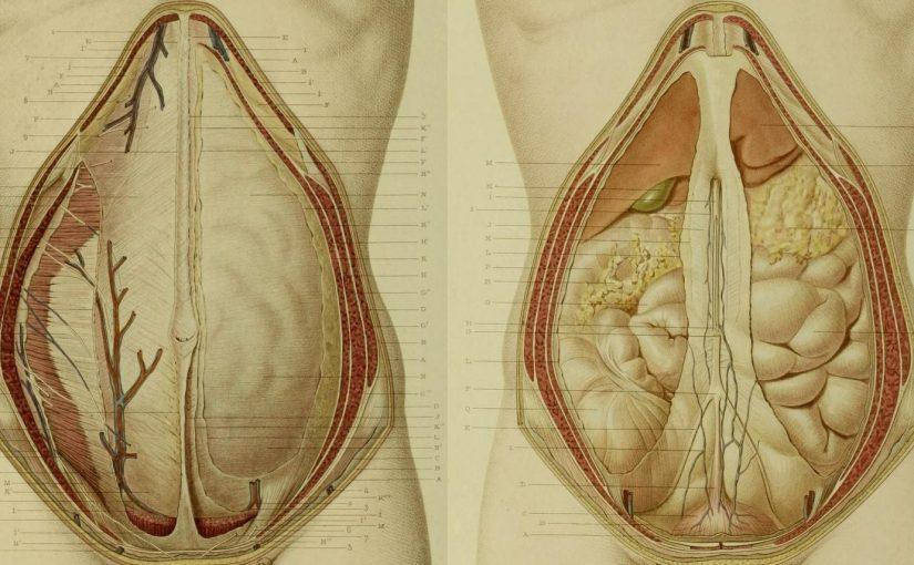 hernia abdomen